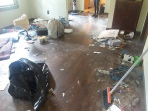 Move out cleaning Dallas